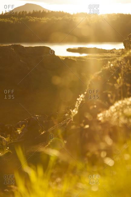 Myvatn lake against the sun