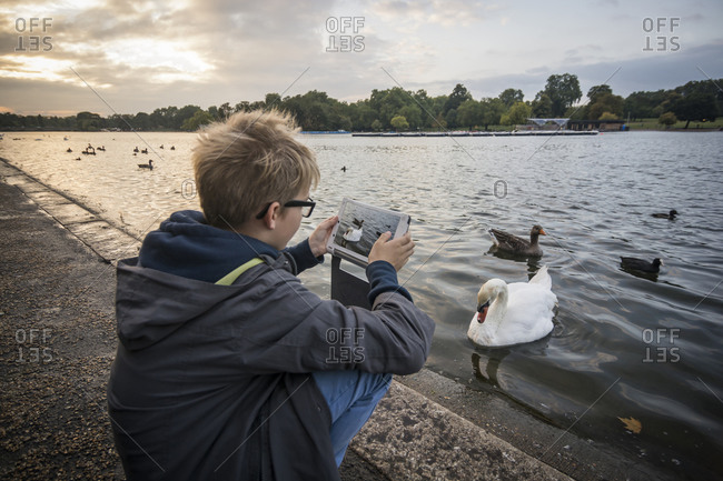Boy photographing water birds with his digital tablet