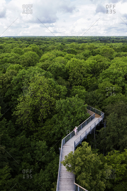 Canopy walkway Hainich, Germany