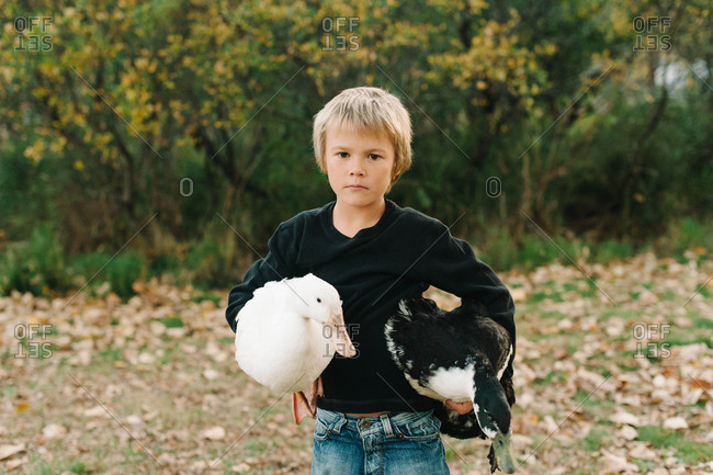 Young boy holding two geese