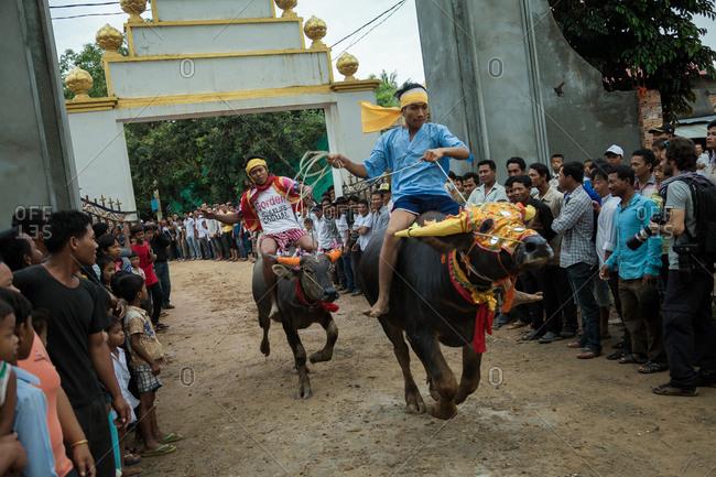 Vihear Suor, Kandal, Cambodia - October 4, 2013: Cambodians racing buffalo in festival