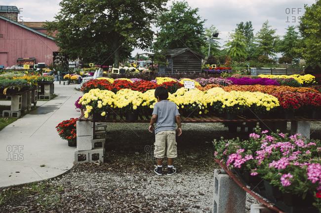 Boy at flower nursery