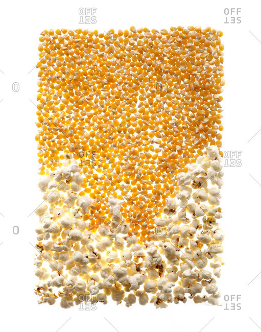 Popcorn kernels arranged in a square