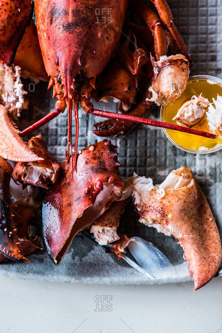 Close up of steamed lobster