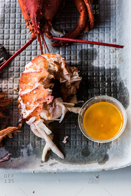 Close up of steamed lobster on plate