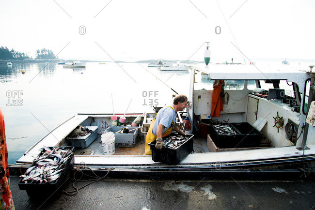 Maine, USA -  August 2013: Fisherman putting fish boxes on a dock