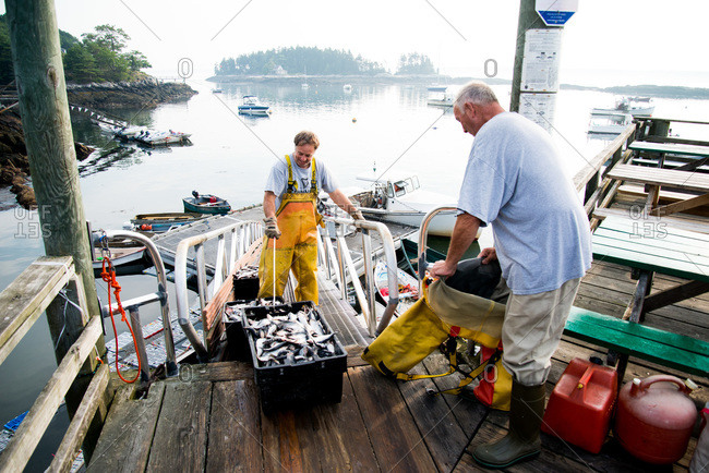 Maine, USA -  August 2013: Fisherman dressing up on a dock