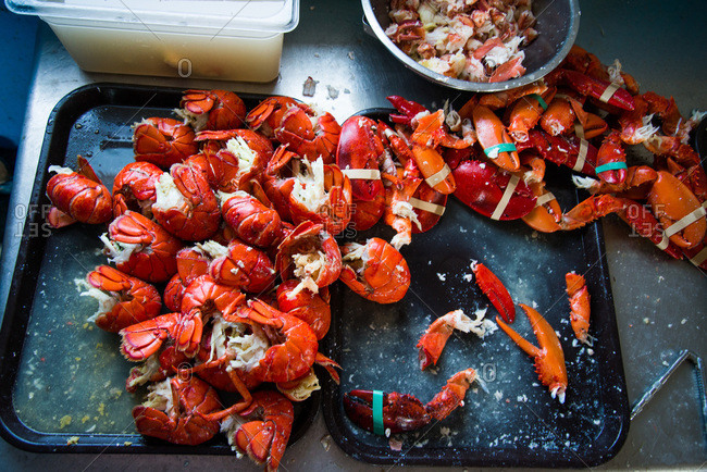 Lobster pieces on a tray