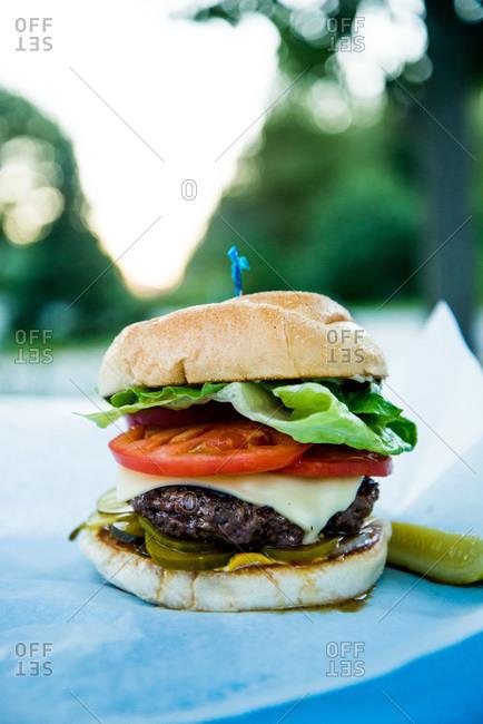 Close up of a juicy hamburger
