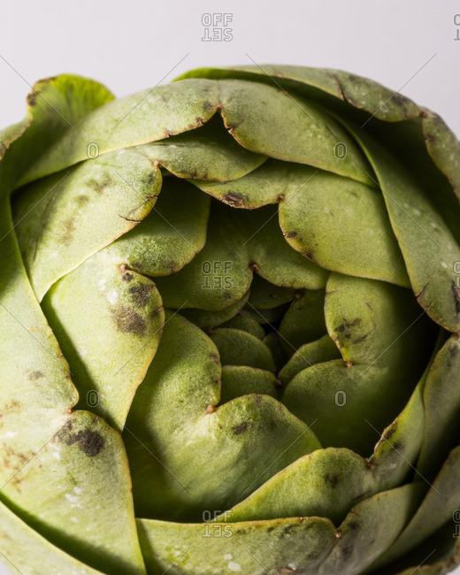 Close-up of artichoke bud