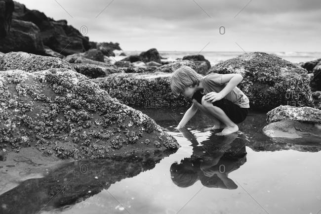 A boy reaching into tide pool