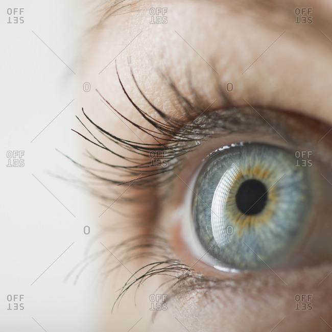 Woman's eye, close up