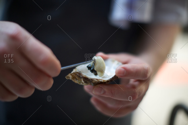 Chef opening fresh oyster
