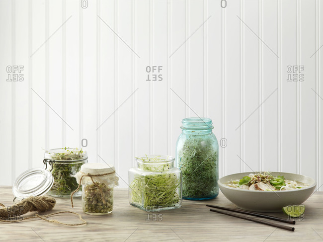 Various jars of sprouts with healthy chicken pho soup