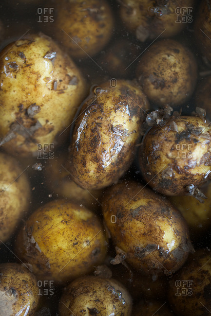 Wet new potatoes with muddy peel