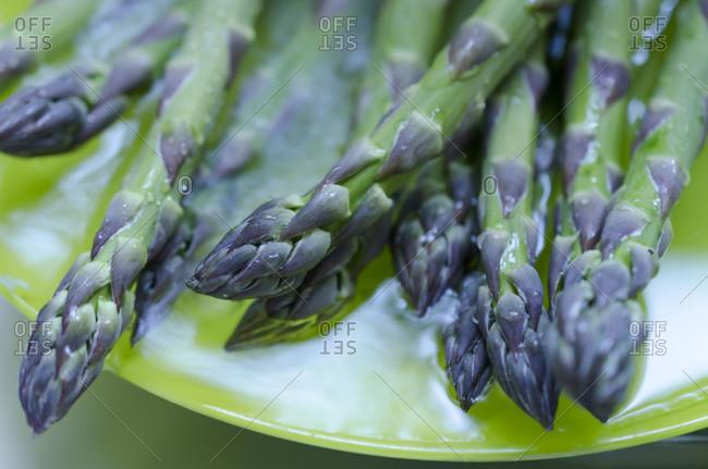 Plate of farm fresh organic asparagus
