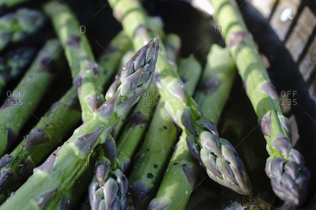 Close up of farm fresh organic asparagus