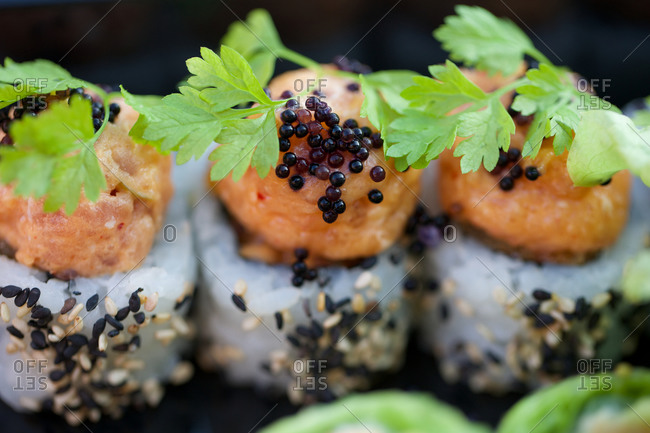 Sushi garnished with fresh coriander