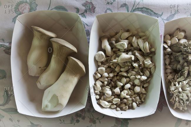 Overhead view of organic mushrooms on tabletop