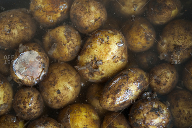 Wet new potatoes