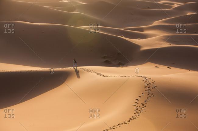 Sahara desert at dawn - Offset