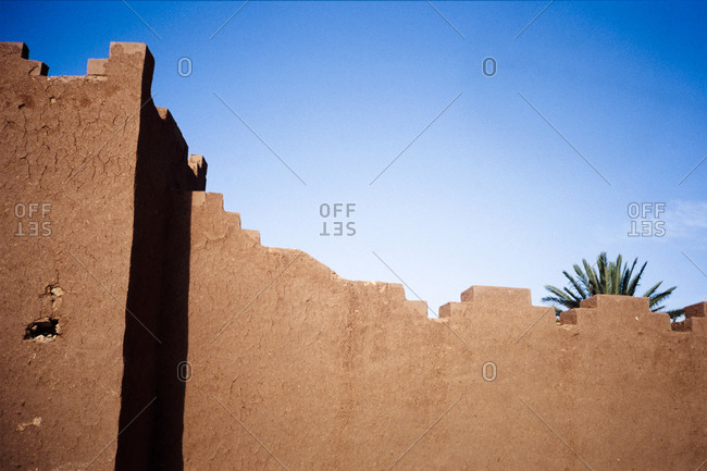Palm tree leaves behind an adobe wall in Morocco