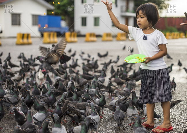 Yangon, Burma - September 20, 2014: A girl feeds pigeons