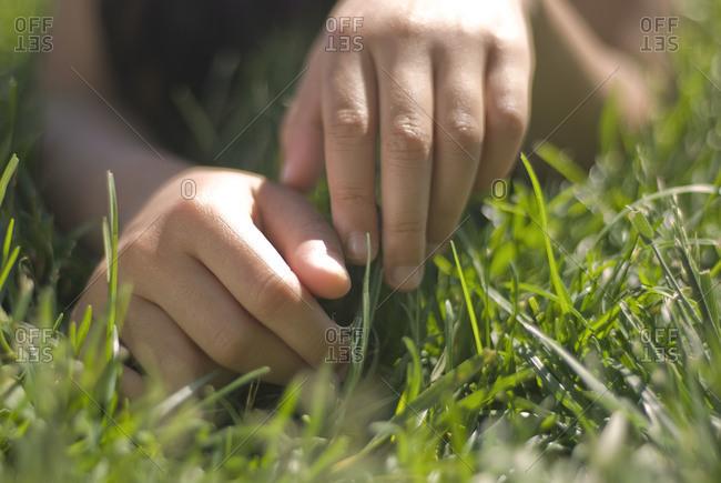 Child's hands in grass