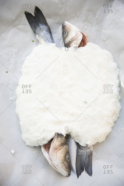 Top view of sea bass covered with salt