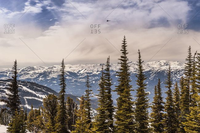 Mountains and forest of Whistler in British Columbia