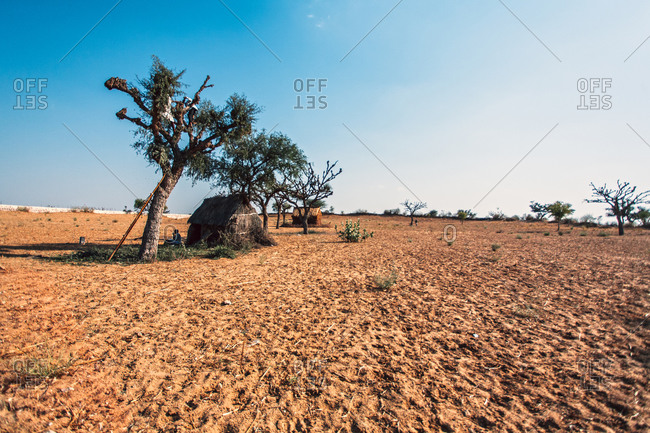 Scene of Rajasthani home in the middle of a dry field