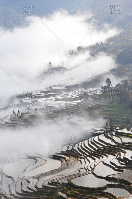Foggy valley and terraced hillsides, China