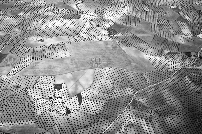 Aerial view of orchards near Madrid, Spain