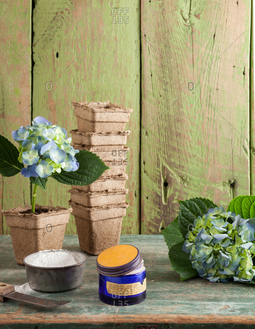 Ingredients for gardening on a tabletop