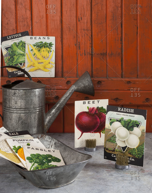 Seed packets and gardening tools