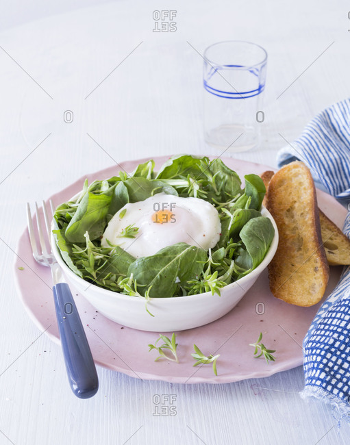 Spring salad served with poached egg