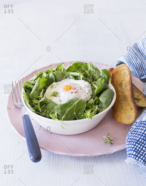 Spring salad and poached egg served with toasts