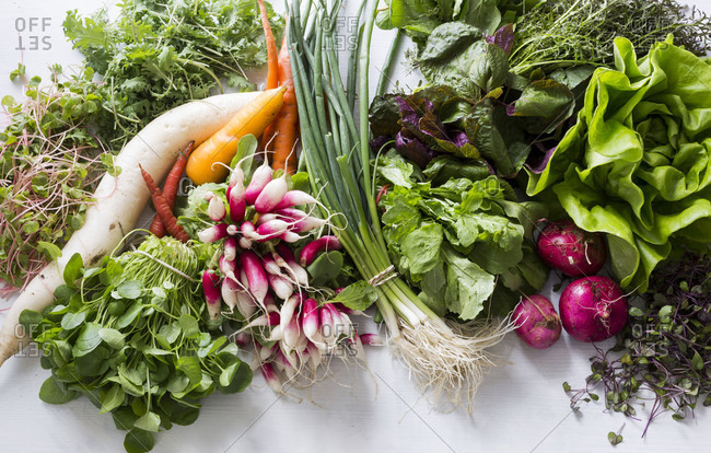 Studio shot of fresh vegetables