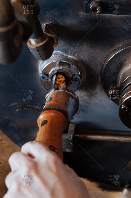 Person checking the coffee beans in a large coffee roaster