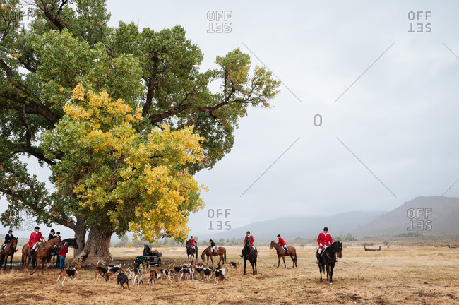 Reno, Nevada, USA - September 28, 2013: Fox hunters and hounds gather under a large oak tree in rural Nevada before the hunt begins, USA