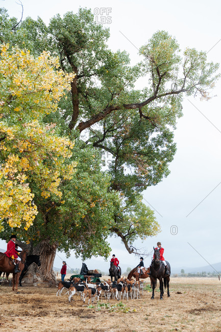 Reno, Nevada, USA - September 28, 2013: Fox hunters gather under a large oak tree in rural Nevada before the hunt begins, USA