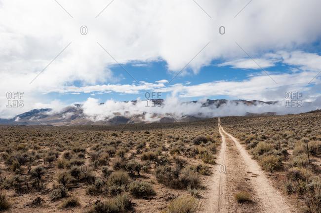Road in the desert, Nevada, USA