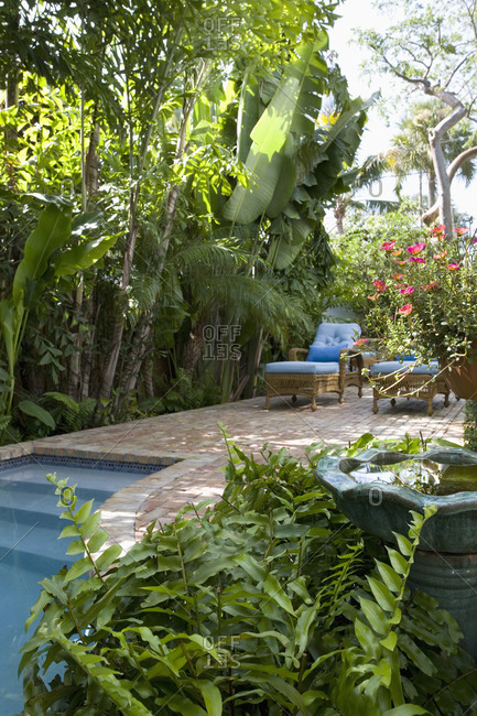 Landscaping along swimming pool - Offset
