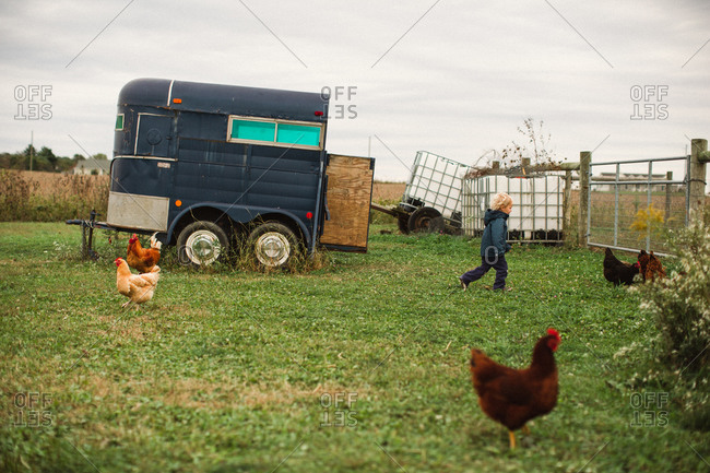 Little boy running after chickens in pen