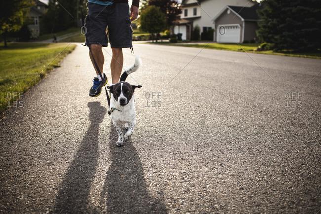 Man taking dog for a walk on suburban street