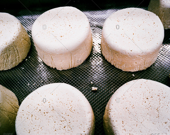 Close up of feta-style goat cheese