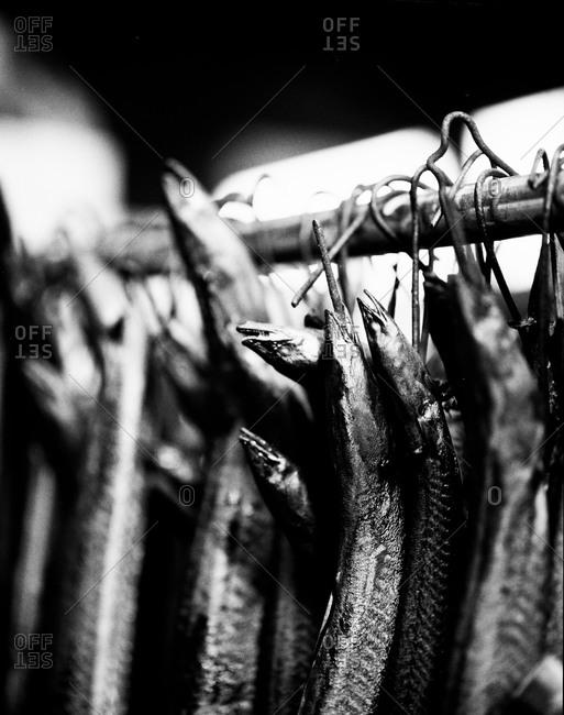 Smoked eels hanging on hooks