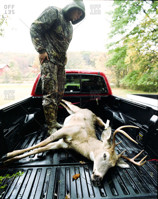Pond Eddy, New York - February 24, 2012: 7 point buck shot with an arrow in the back of a pickup truck