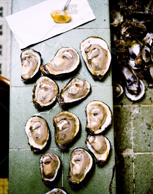 Fresh oysters placed on table