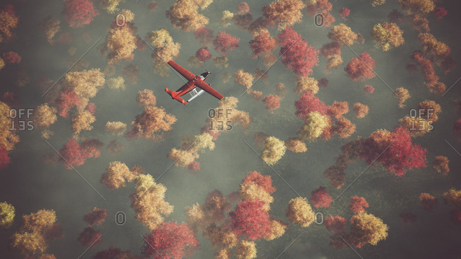 Aerial of red airplane flying over autumn forest in the mist